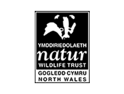north-wales-wild-life-vq.png